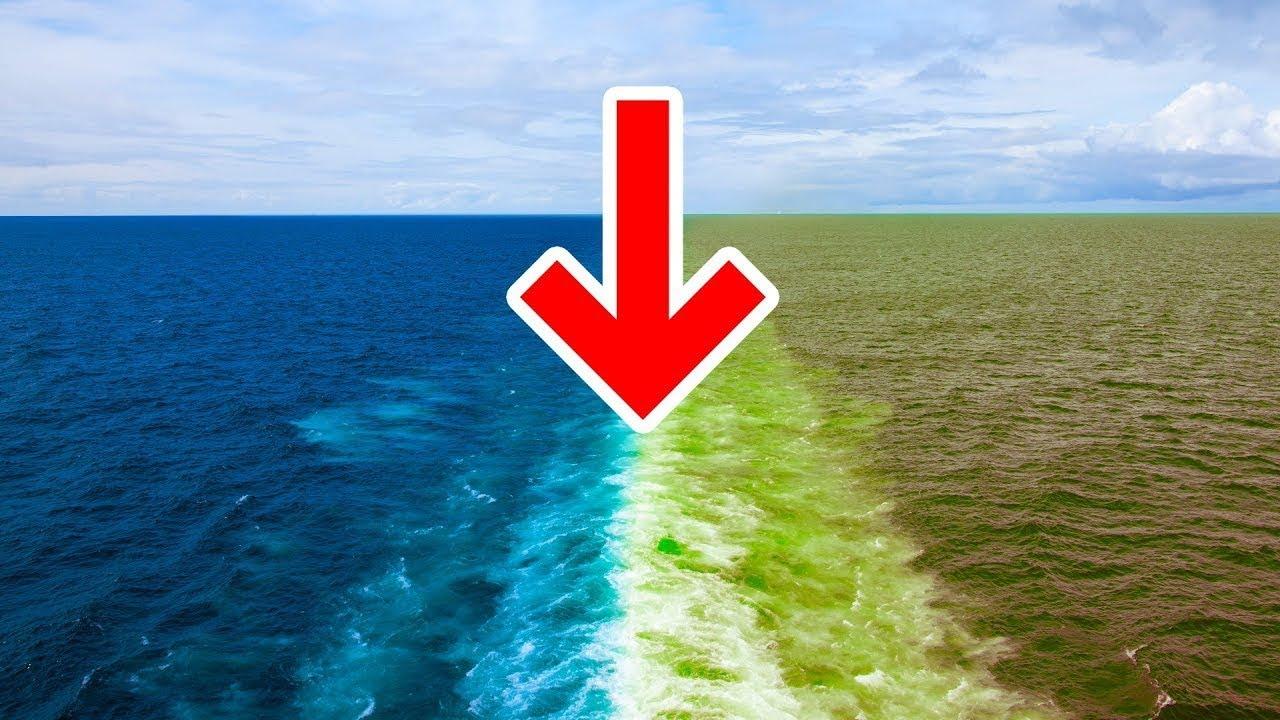 المحيط الأطلسي , الدول المطلة على المحيط الأطلسي , خريطة المحيط الأطلسي , أين يقع المحيط الأطلسي , المحيط الأطلسي بحر الظلمات , أين يلتقي المحيط الهادي والمحيط الأطلسي , المحيط الأطلسي ضربة معلم , لماذا سمي المحيط الأطلسي بهذا الاسم , المحيط الأطلسي الجزر , المحيط الأطلسي بحر الظلمات , المحيط الهادي , المحيط الهندي , المحيط الأطلسي , جسر الموت , أمواج المحيط الهادي , ترتيب المحيطات من الأكبر إلى الأصغر , مساحة المحيط الهندي الأطلسي , من 4 حروف , المحيط الأطلسي بالفرنسية , المحيط الأطلسي ضربة معلم , مساحة المحيط المتجمد الشمالي , مشروع تخرج دراسه , المحيط الأطلسي , أين يلتقي المحيط الهادي والمحيط الأطلسي , المحيط الأطلسي بالانجليزي , الدول المطلة على المحيط الهادي , دول المحيط الهندي , المحيط المتجمد الشمالي , المحيطات , المحيط الأطلسي على الخريطة , ضربة معلم , المحيط الهادي على الخريطة , خريطة المحيط الهندي , خريطة المحيطات , خريطة البحر المتوسط , مثلث برمودا , المحيط الهادي pdf , موانئ المحيط الأطلسي , المحيط الهادي والاطلسي , محيط يفصل اوروبا وافريقيا عن امريكا , المحيط الأطلسي - ويكيبيديا , بوابة:المحيط الأطلسي - ويكيبيديا , المحيط الأطلسي - المعرفة , المحيط الأطلسي.. ثاني محيطات العالم , منطقة دول المحيط الاطلسي والهندي والبحر المتوسط , المحيط الأطلسي — الفنون والثقافة من Google , أكبر محيط الهادي أم الأطلسي , ما هو اكبر محيط في العالم مكون من 6 حروف , أكبر المحيطات مساحة هي , أكبر بحر بالعالم , المحيطات على الخريطة , عدد المحيطات في العالم ويكيبيديا , ترتيب المحيطات من الأكبر إلى الأصغر , المحيط الهادي , ما هو اكبر محيط في العالم مكون من 6 حروف , أكبر بحر بالعالم , أعمق نقطة في بحار العالم , قاع المحيطات , كم اكتشف من البحر , أعمق نقطة في البحر , أكبر المحيطات مساحة هي , أصغر المحيطات , أكبر محيط الهادي أم الأطلسي , أكبر المحيطات مساحة فطحل , ايهما أعمق المحيط الهادي أم الهندي , اسماء المحيطات السبعة , اسماء المحيطات بالانجليزي , الفرق بين المحيط والبحر , المحيط الهندي باعتباره ابا المحيطات , أكبر دولة عربية مساحة , ما معنى المحيط , أكبر مساحة بلد في العالم , المحيط الهادي