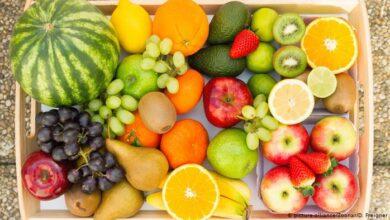 أهمية الغذاء الصحي وقود الحياة ( كل شئ عن الغذاء السليم)