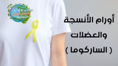 الساركوما (sarcoma ) , سرطان ساركوما , نسبة الشفاء من سرطان الساركوما , ساركوما العظام , حالات شفيت من الساركوما , الساركوما العظمية , نسبة الشفاء من الساركوما العظمية , ساركوما الرئة , نسبة الشفاء من ساركوما العظام , مرض ساركوما , الساركوما الغضروفية , ورم ساركوما , أنواع أورام الساركوما , اعراض الساركوما العظمية , ساركوما سرطان , اعراض الساركوما , نسبة الشفاء من الساركوما , سرطان ساركوما العظام , ما هو سرطان الساركوما , علاج الساركوما بالاعشاب , ساركوما الرحم , سرطان ساركوما الرئة , سرطان كابوزي , علاج الساركوما , سرطان ساركوما الرحم , سرطان ساركوما الثدي , سرطان ساركوما البطن , ساركوما إيوينغ , ساركوما عظمية , كانسر ساركوما , ورم الساركوما , ساركوما كابوزي الجلد , اعراض ساركوما العظام , ايوينغ ساركوما , مرض الساركوما العظمية , ساركوما غضروفية , سرطان الساركوما في الرئة , سرطان ساركوما كابوسي , ساركوما ايوينغ , الساركوما الرحمية , مرض ساركوما العظام , ساركوما الثدي , أورام الأنسجة والعضلات , الساكورما , هل الساركوما قاتل , نسبة الشفاء من سرطان الساركوما , نسبة الشفاء من سرطان الأنسجة الرخوة , درجات الساركوما , ما هي الأنسجة الرخوة , أنواع أورام الساركوما , الساركوما الحميدة , الساركوما الشحمية , نسبة الشفاء من سرطان الساركوما , درجات الساركوما , الساركوما الحميدة , تجربتي مع الساركوما , نسبة الشفاء من الساركوما العظمية , درجة عالية من الساركوما , العلاج المناعي , الساركوما , أنواع أورام الساركوما , شفيت من الساركوما , هل الساركوما قاتل , وصفة لعلاج السرطان نهائيا , درجات الساركوما , الساركوما الحميدة , علاج السرطان بالاعشاب مجرب , عشبة لعلاج السرطان , الطب النبوي لعلاج السرطان , هل الساركوما قاتل , علاج سرطان الساركوما بالاعشاب , الساركوما الحميدة , نسبة الشفاء من الساركوما العظمية , درجة عالية من الساركوما , أعراض الساركوما , شكل ورم الأنسجة الرخوة , سرطان الساركوما النادر , هل الساركوما قاتل , نسبة الشفاء من سرطان الساركوما , درجات الساركوما , سرطان الساركوما ويكيبيديا , تجربتي مع الساركوما , الساركوما الحميدة , أنواع أورام الساركوما , علاج الساركوما , العلاج المستهدف , العلاج الكيمياوية , المعالجة الإشعاعية , الأعراض والعلامات السريرية , التعرض للفيروسات , التع