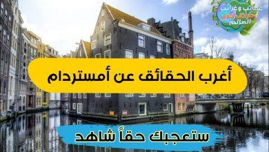 أمستردام , أمستردام,امستردام,امستردام هولندا,امستردام شارع الاحمر,امستردام الازقة الحمراء,منطقة الضوء الاحمر امستردام,امستردام المنطقة الحمراء,هولاندا,رحلات,هولندا,استكشاف,سفر هولندا,سياحة هولندا,الشارع الاحمر,مغامرات أوروبا,منطقة الضوء الاحمر,8-7-18,raamverhuurder op de wallen,raamverhuur wallen,achter de wallen,behind the red light district amsterdam,red light district amsterdam,red light district,room rental red light district,rosse buurt , الشارع الاحمر,امستردام,اسم الشارع الاحمر في امستردام,امستردام شارع الاحمر,امستردام الشارع الاحمر,اين يقع الشارع الأحمر في أمستردام,منطقة الضوء الاحمر امستردام,فنادق امستردام الشارع الاحمر,الشارع الاحمر فى امستردام وثائقي,هولندا امستردام الشارع الاحمر,الشارع الاحمر في هولندا,منطقة الضوء الاحمر في امستردام,الشارع الاحمر في هامبورغ,الشارع الاحمر في هولندا هولندا,منطقة الضوء الاحمر,منطقة الضوء الأحمر في أمستردام,شارع الضوء الاحمر في هولندا , السياحه في امستردام , امستردام هولندا , السياحة في امستردام , مدينة امستردام , امستردام , أمستردام سياحة , أمستردام , امستردام سياحة , سياحة امستردام , السفر الى امستردام , هولندا أمستردام , حقائق عن أمستردام , اين تقع امستردام , امستردام اين تقع , الشارع الاحمر بامستردام , امستردام عاصمة هولندا , امستردام , عاصمة امستردام , اين توجد امستردام , الشارع الاحمر فى امستردام , أين تقع أمستردام , امستردام عاصمة اي بلد , اين تقع امستردام , في اي دوله amsterdam , اين تقع عاصمتها امستردام , صور امستردام , أمستردام أين تقع , شارع الاحمر في امستردام , امستردام عاصمة اي دوله , اين تقع مدينة امستردام , عدد سكان امستردام , عيوب أمستردام , اين امستردام , المنطقة الحمراء امستردام , مساحة امستردام , اماكن سياحية في امستردام , بماذا تشتهر أمستردام , موقع امستردام , المنطقة الحمراء في امستردام , شوارع امستردام , أمستردام هولندا , منطقة الضوء الاحمر في امستردام , معلومات عن امستردام , رحلتي الى امستردام , الاماكن السياحية في امستردام , اين تقع امستردام ويكيبيديا , سوق الأزهار في أمستردام , متحف فان جوخ أمستردام , دولة امستردام , اماكن سياحية في هولندا , امستردام في اي دولة تقع , امستردام , معالم امستردام , ما هي 