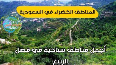 أجمل 10 مناظر طبيعية في السعودية، أجمل عشر أماكن في السعودية، أخبار السعودية، اجمل الأماكن في السعودية، اجمل التراث في المملكة العربية السعودية، اجمل المناطق في جنوب السعودية، السعودية، السعودية الخضراء، السعودية اليوم، السعودية خضراء، السعوديه، المبادرة السعودية الخضراء، جنوب السعودية، زيادة المساحة الخضراء فى السعودية، مبادرة السعودية الخضراء، مبادرة السعودية خضراء، مبادرتا السعودية الخضراء والشرق الاوسط الاخضر، مناطق خضراء في السعودية، هل يوجد في السعودية خضار وغابات , مناطق خضراء في السعودية , عسير السعودية , مياه سمو خميس مشيط , وادي لجب جيزان الباحه , غابة رغدان , محافظات عسير , رغدان الباحه , الباحة رغدان , منتجع قرية رغدان , الباحة , الباحه رغدان , منتجعات الباحة رغدان , قرية الشفا بالطائف , رغدان الباحة , غابة رغدان الباحة , غابة رغدان في الباحة , تهامة عسير , خريطة عسير , مساحة منطقة عسير , محافظات منطقة عسير , خريطة منطقة عسير , اين تقع تنومه في السعوديه , كم تبعد المجاردة عن أبها , معلومات عن منطقة عسير , اين تقع محايل عسير , مراكز منطقة عسير , اسماء أحياء محايل عسير , عسير ابها , وادي لجب في جازان , كم تبعد الواديين عن أبها , كم تبعد الحريضة عن محايل عسير , منطقة تهامة عسير , خميس مشيط كم تبعد عن أبها , جازان وادي لجب , حديقة ابو خيال بأبها , حديقة رغدان الباحه , منطقة عسير السعودية , بحث عن منطقة عسير , عاصمة منطقة عسير , حديقة السد بأبها , موقع قرية المفتاحة بأبها , حديقة رغدان في الباحه , محافظة البرك بمنطقة عسير , طبيعة عسير , هل عسير هي ابها , أحد رفيدة , خميس مشيط , عاصمه عسير , غابة رغدان بالباحة , عسير منطقة , منطقة عسير بالسعودية , منطقة عسير في السعودية , حديقه أبو خيال بأبها , غابة رغدان الباحه , منطقة عسير على الخريطة , غابه رغدان الباحه , اين تقع محايل عسير في السعوديه , محايل ابها السعودية , عسير غابات رغدان الباحه , كم تبعد المجاردة عن ابها , منتزه السلام بابها , حديقة السلام بابها , واحة حيبر بالمدينة المنورة , عسير في السعودية , حديقة أبها بأبها , جبال الفيفا بجيزان, عسير السعودية , مياه سمو خميس مشيط , وادي لجب جيزان الباحه , غابة رغدان , محافظات عسير , رغدان الباحه , الباحة رغدان , منتجع قرية رغدان الباحة , الباحه رغدان , منتجعات البا