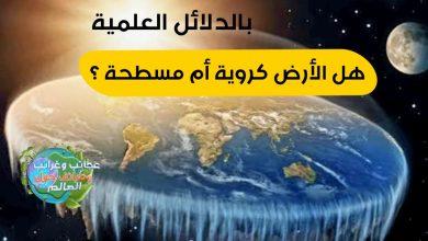 الأرض مسطحة ! ؟ , ثبت أن الأرض كانت دائرية منذ 300 عام,الادعاء بأن الأرض كروية ليس جديدًا , الأرض ليست مسطحة , هل الأرض تتحرك ؟ , شكل الكرة الارضية من الفضاء, الارض كروية الشكل,هل الأرض مسطحة أم كروية ؟,هل الأرض مسطحة أم كروية ؟ شكل الأرض, وصف شكل الارض , ماهو الدليل على ان الارض كروية , الارض كروية الشكل , هل الكرة الارضية مسطحة او كروية , الارض الكروية , الارض مسطحه ام كرويه , ايات تثبت ان الارض كروية , شكل الكرة الارضية من الفضاء , الارض مسطحة ولا كروية , ماذا لو كانت الارض مسطحة , خريطة الارض المسطحة pdf , هل الأرض مسطحة أم كروية , شكل الأرض , الارض مسطحة , الارض كروية , هل الارض كروية ام مسطحة , الارض المسطحة , خريطة الارض المسطحة , الارض كروية ام مسطحة , الارض مسطحة ام كروية , شكل كوكب الأرض الحقيقي , هل الارض مسطحة , كروية الارض , هل الأرض مسطحة أم كروية مع الدليل , دلائل الأرض المسطحة , ما هو شكل الارض , شكل الارض الحقيقي , نظرية الارض المسطحة , الارض مسطحه , هل الارض كروية , شكل كوكب الارض , إثبات أن الأرض كروية بالقران , دليل ان الارض كروية , إثبات كروية الأرض بالقران , من اول من قال بكروية الارض , الأرض مسطحة بالقران , , من هو العالم الذي اكتشف كروية الأرض , شكل الأرض الحقيقي من الفضاء , دليل على ان الارض كرويه , هل الارض كروية او مسطحة , هل الكرة الارضية مسطحة ام كروية , دليل ان الارض مسطحة , اثبات كروية الارض , شكل الارض وابعادها , ما شكل الارض , هل الكرة الارضية مسطحة , الارض كرويه , شكل الكرة الأرضية الحقيقي , شكل الارض المسطحة , ايات تدل على ان الارض مسطحة , ايات تدل على كروية الارض , اول من قال بكروية الارض , أدلة كروية الأرض , شكل الكرة الأرضية , اثبات ان الارض مسطحة , كيف شكل الارض , اية تدل على كروية الارض , هل الارض كرويه ام مسطحه , لماذا الارض كروية , دليل كروية الارض , مكتشف كروية الارض , ايات الارض المسطحة , ايات تثبت ان الارض مسطحة , من اكتشف كروية الارض , ايه تدل على ان الارض كرويه , هل الارض مسطحه ام كرويه , ادلة على كروية الارض , شكل الارض من الفضاء , دليل على ان الارض مسطحة , اول من اكتشف كروية الارض , الكره الارضيه مسطحه او كرويه , حقيقة الارض المسطحة , دليل على كروية الارض , آية قرآنية تثبت كروية الأرض , الشكل الحقيقي للارض , نموذج الا
